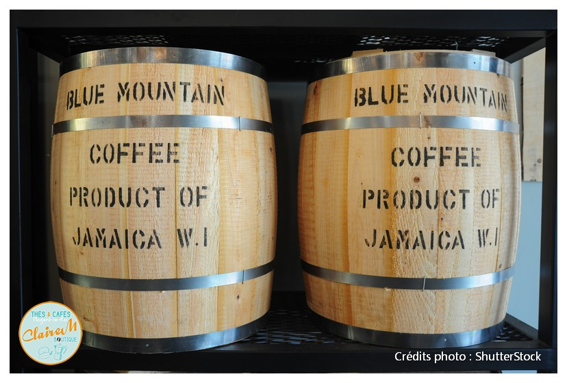 2 tonneaux de café Blue mountain